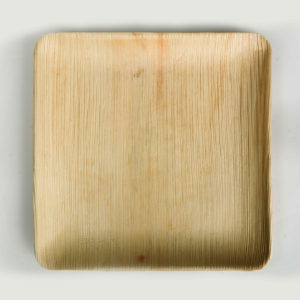 """9""""x9"""" Square plate"""